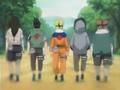 Equipe Chikamaru