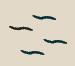 Symbole Kiri