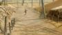 Naruto Shippuden : Ultimate Ninja Storm 2 (7)
